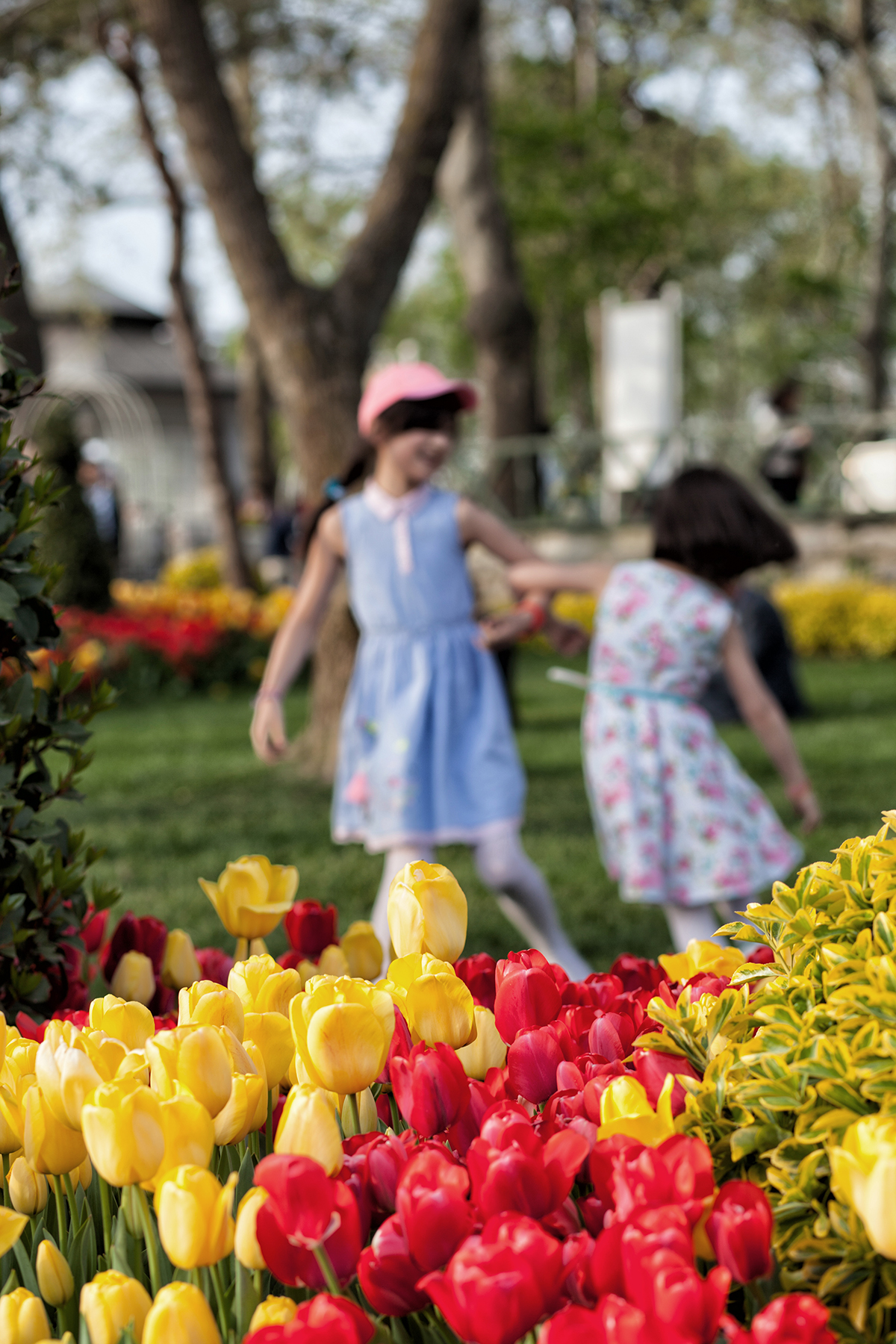#101 —Çamlıca - 