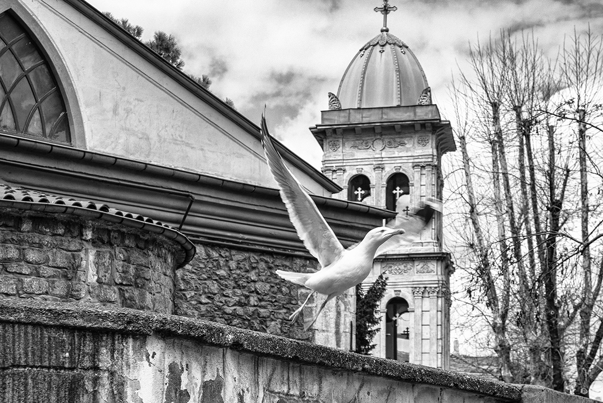Day 88 —Kuzguncuk - 