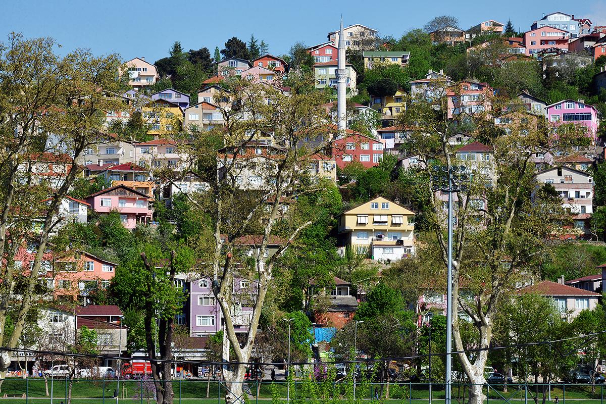 #106 —Beykoz -  Beykoz meadow.