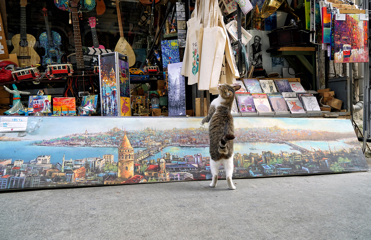 Day 144 —Taksim – 