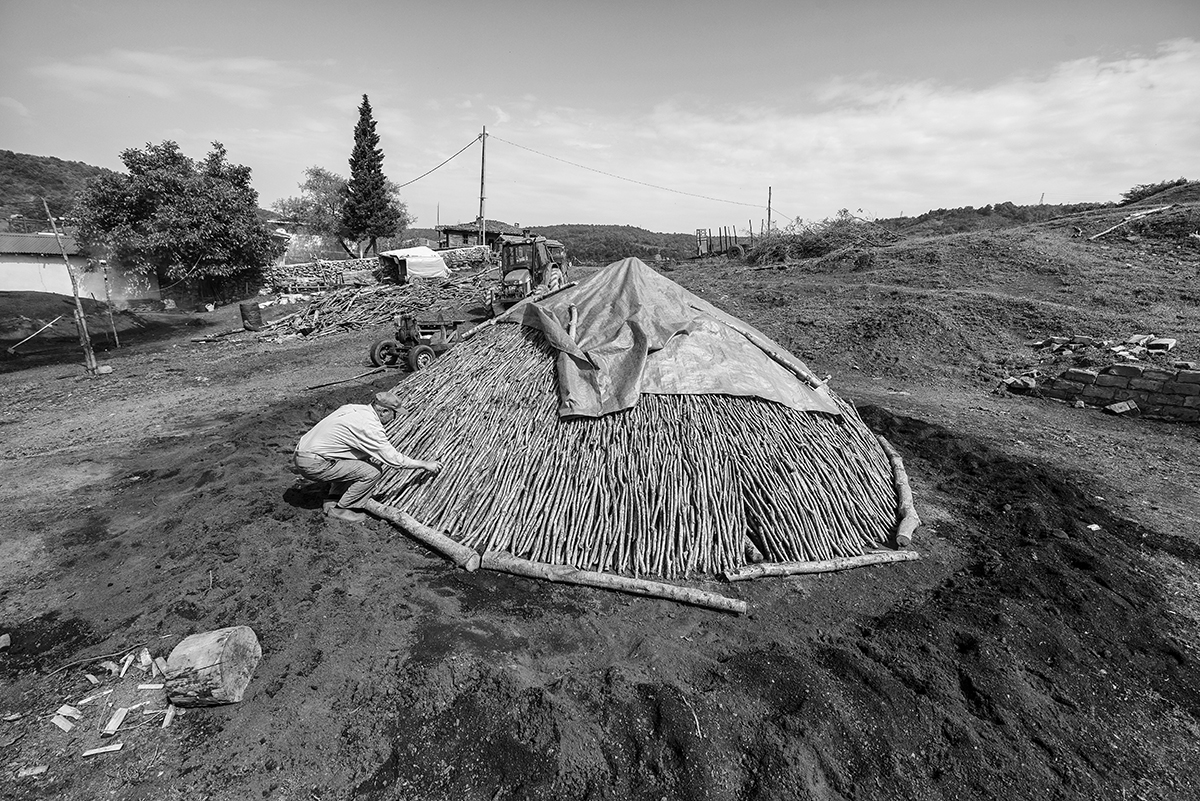 Day 134 —Şile  - 