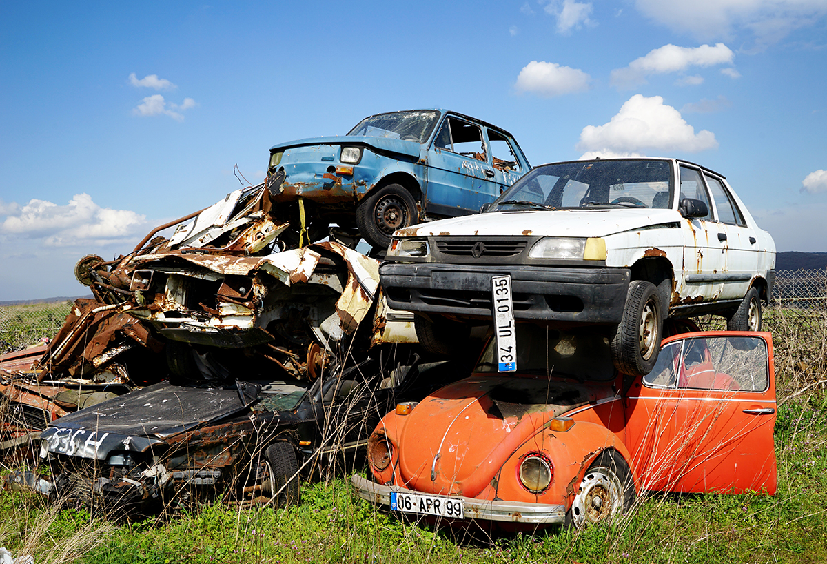 Day 70 —Hasdal - Automobile graveyard.