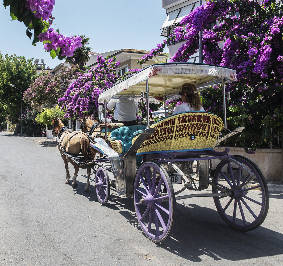 #208 —Burgazada - 